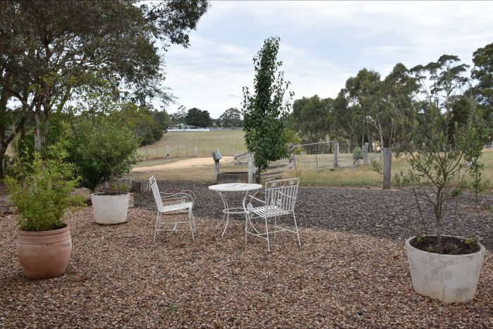 Cygnet Park Country Retreat - Sydney Tourism