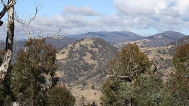 Mt Tennent