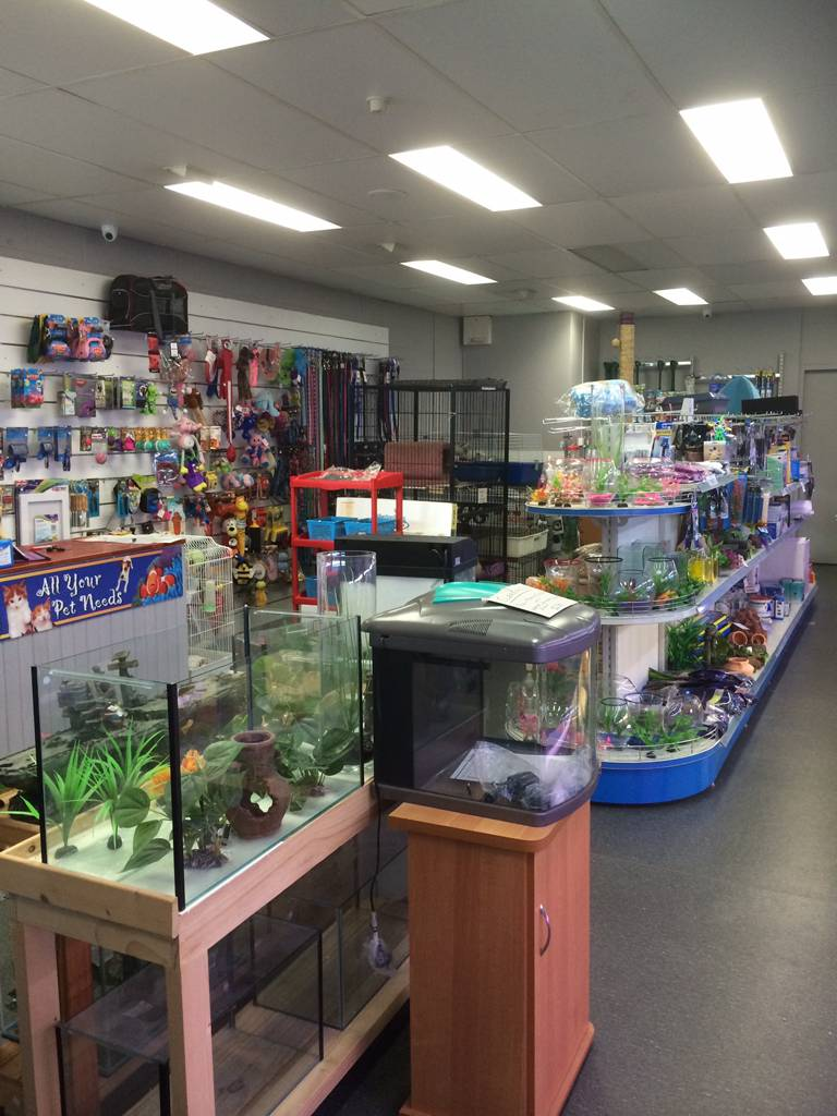 Nambour Pet Shop - Sydney Tourism