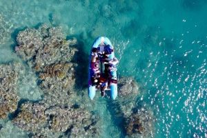 Glass-bottom boat tour with Whitehaven Beach - Sydney Tourism