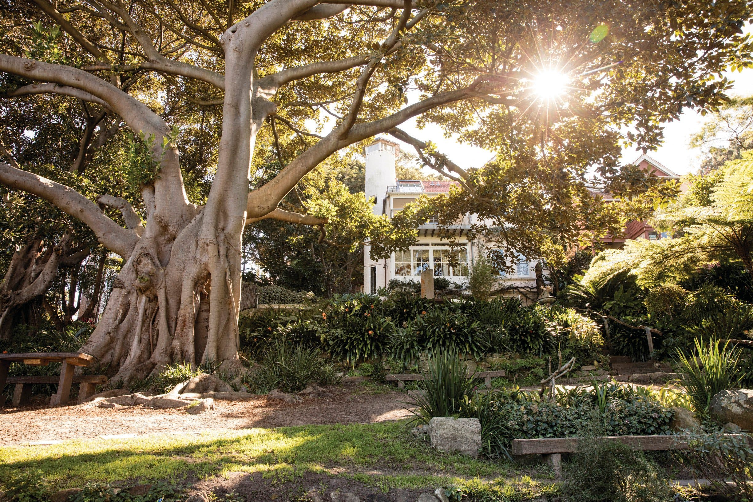 Wendy Whiteley's Secret Garden - Sydney Tourism