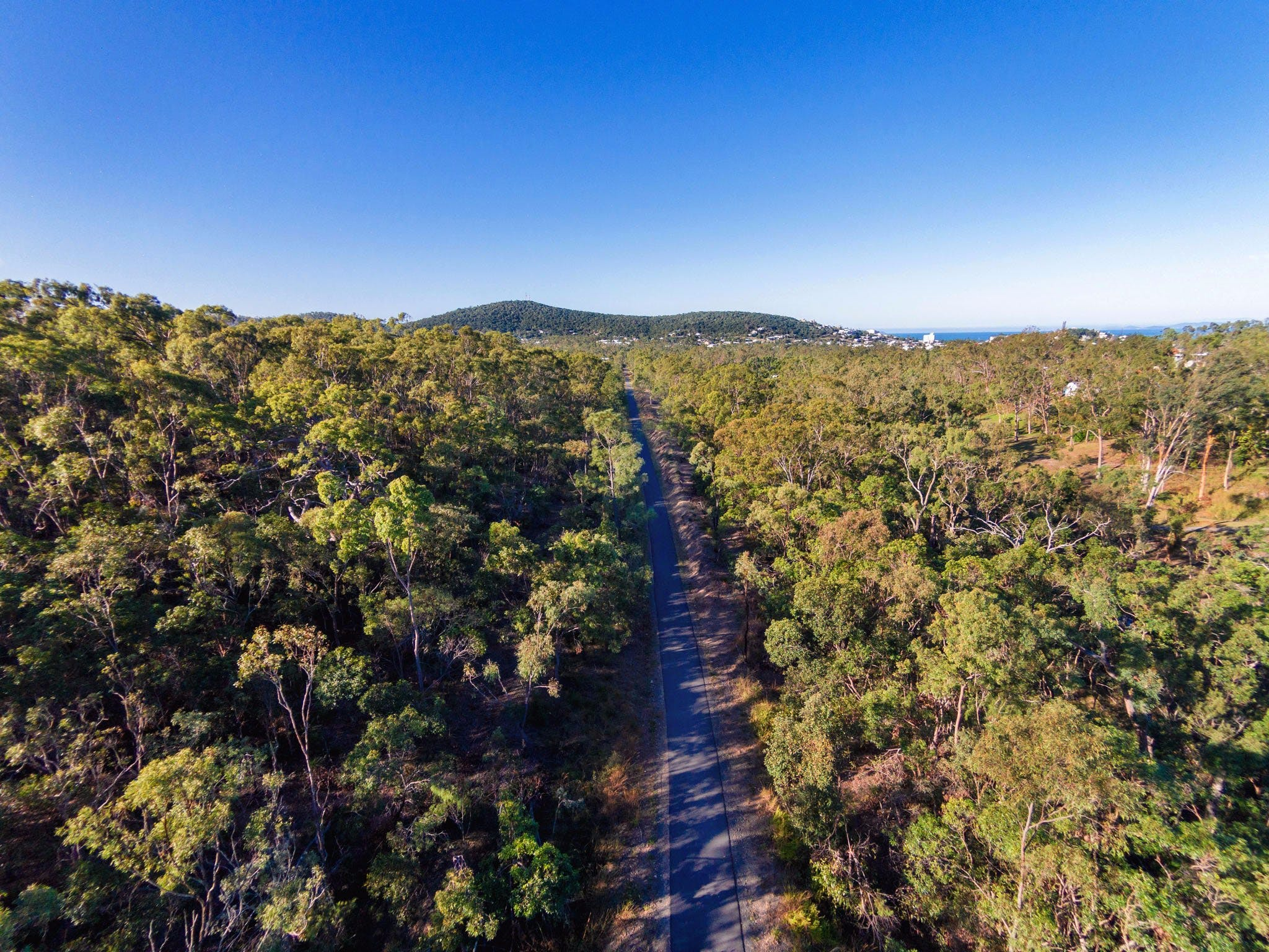 Capricorn Coast Pineapple Rail Trail - Sydney Tourism