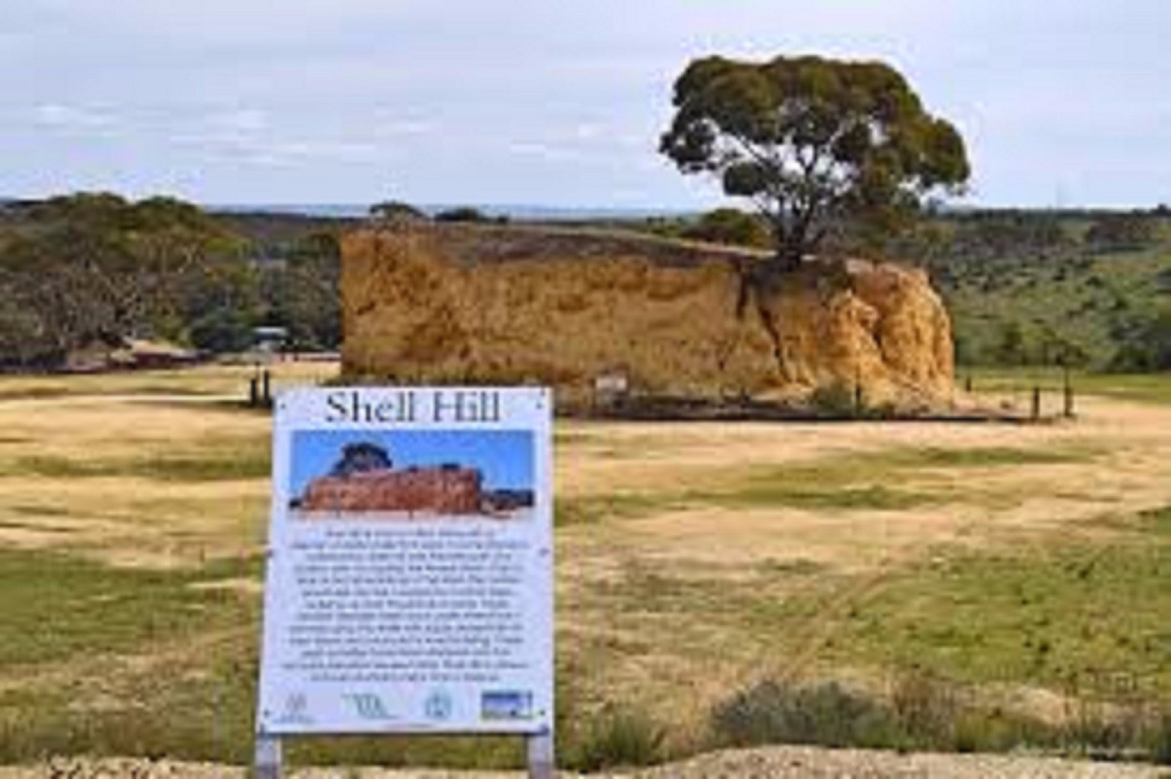 Shell Hill Reserve - Sydney Tourism