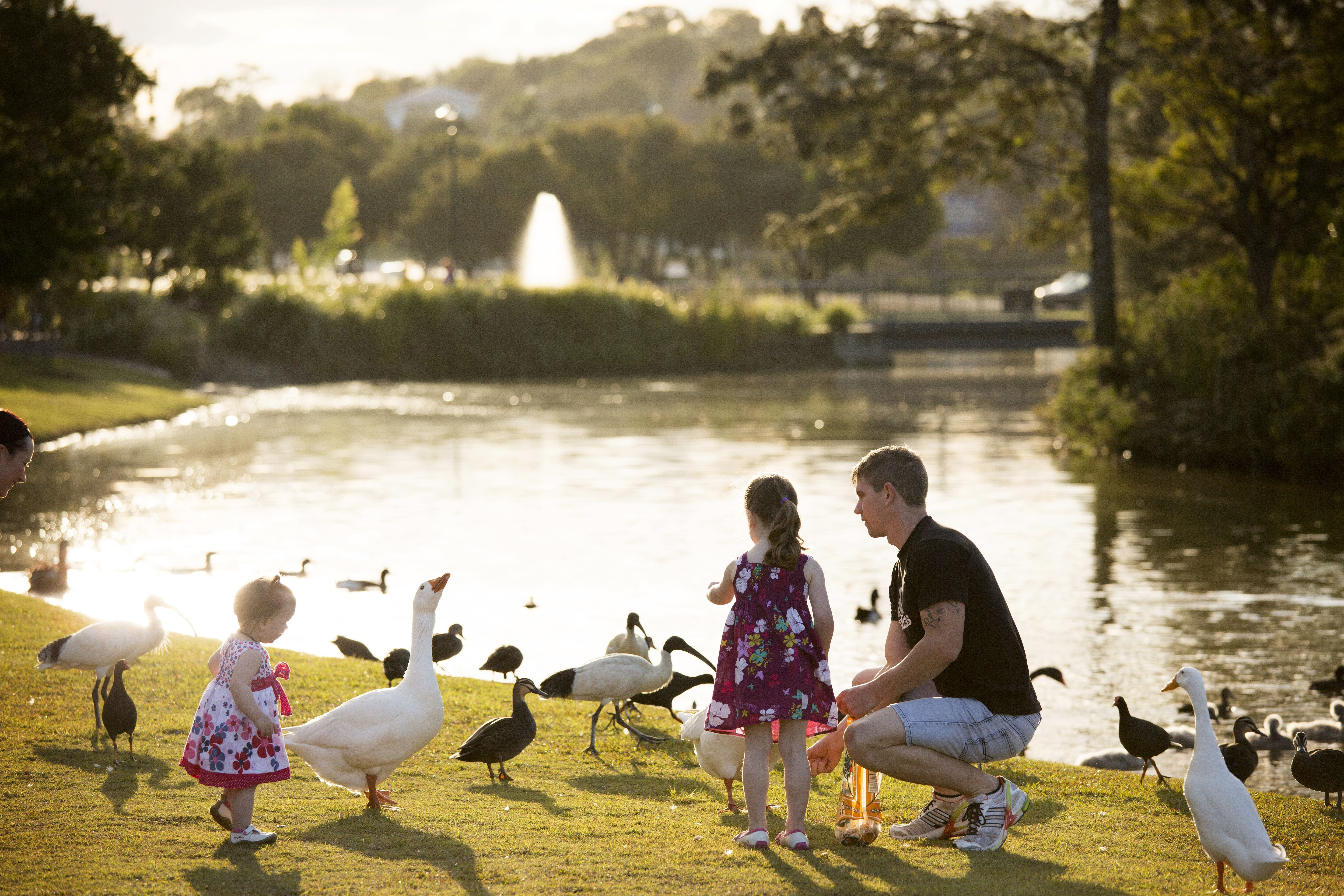 Lake Alford Recreational Park - Sydney Tourism