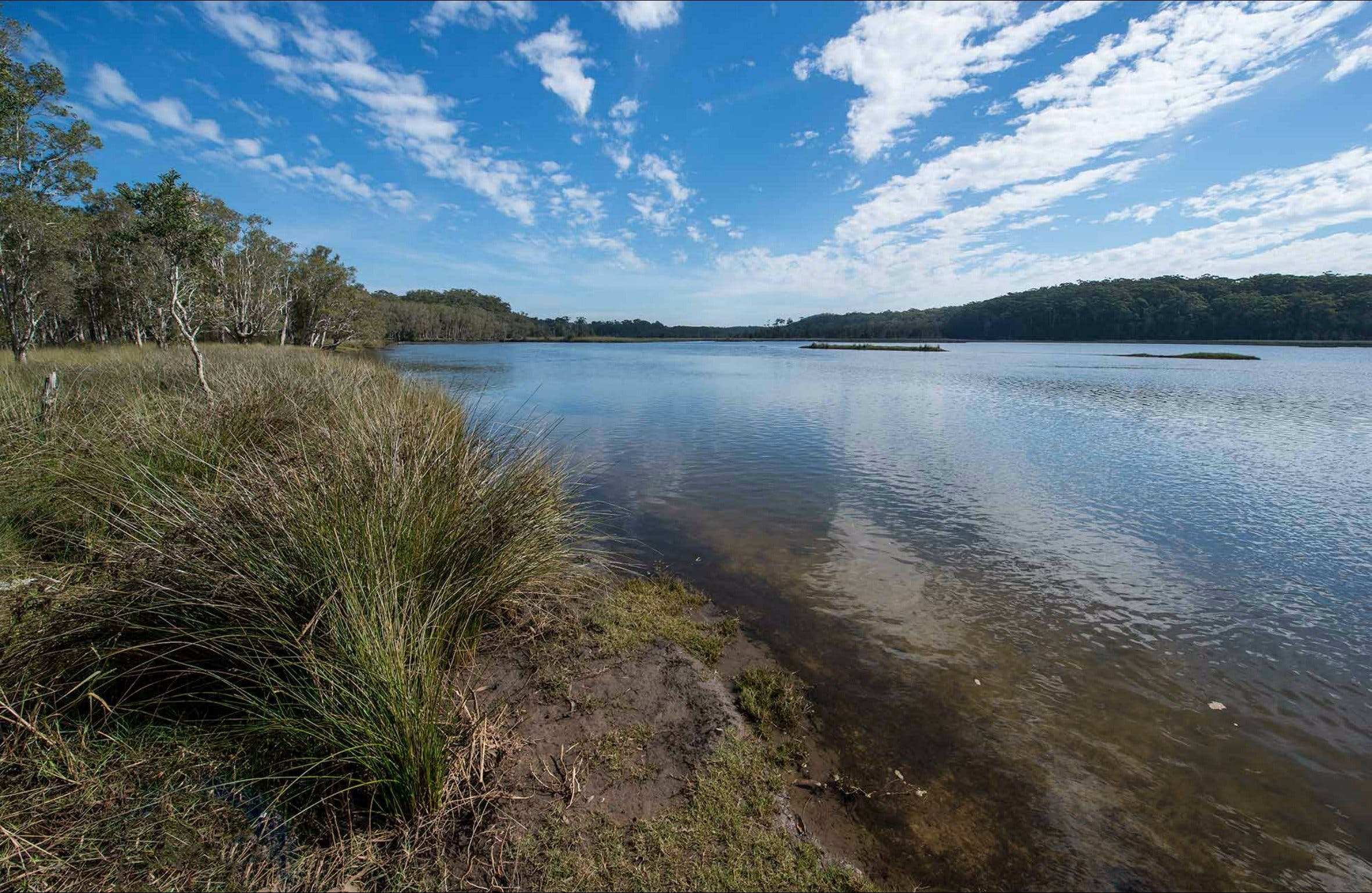 Lake Innes Nature Reserve - Sydney Tourism
