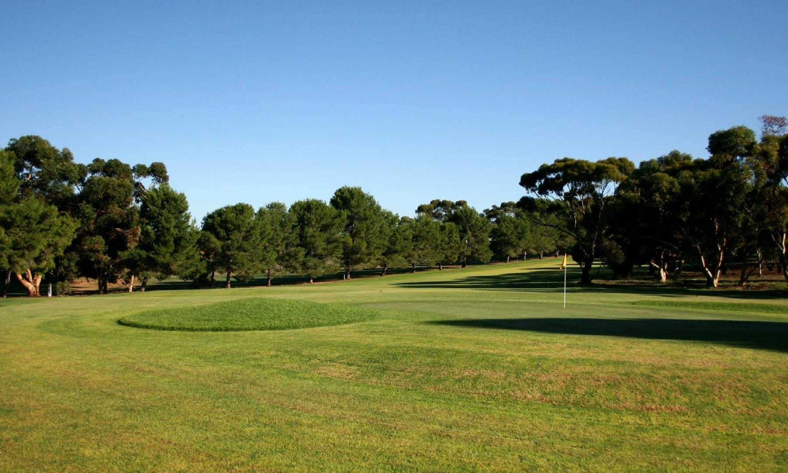 Mannum Golf Club - Sydney Tourism