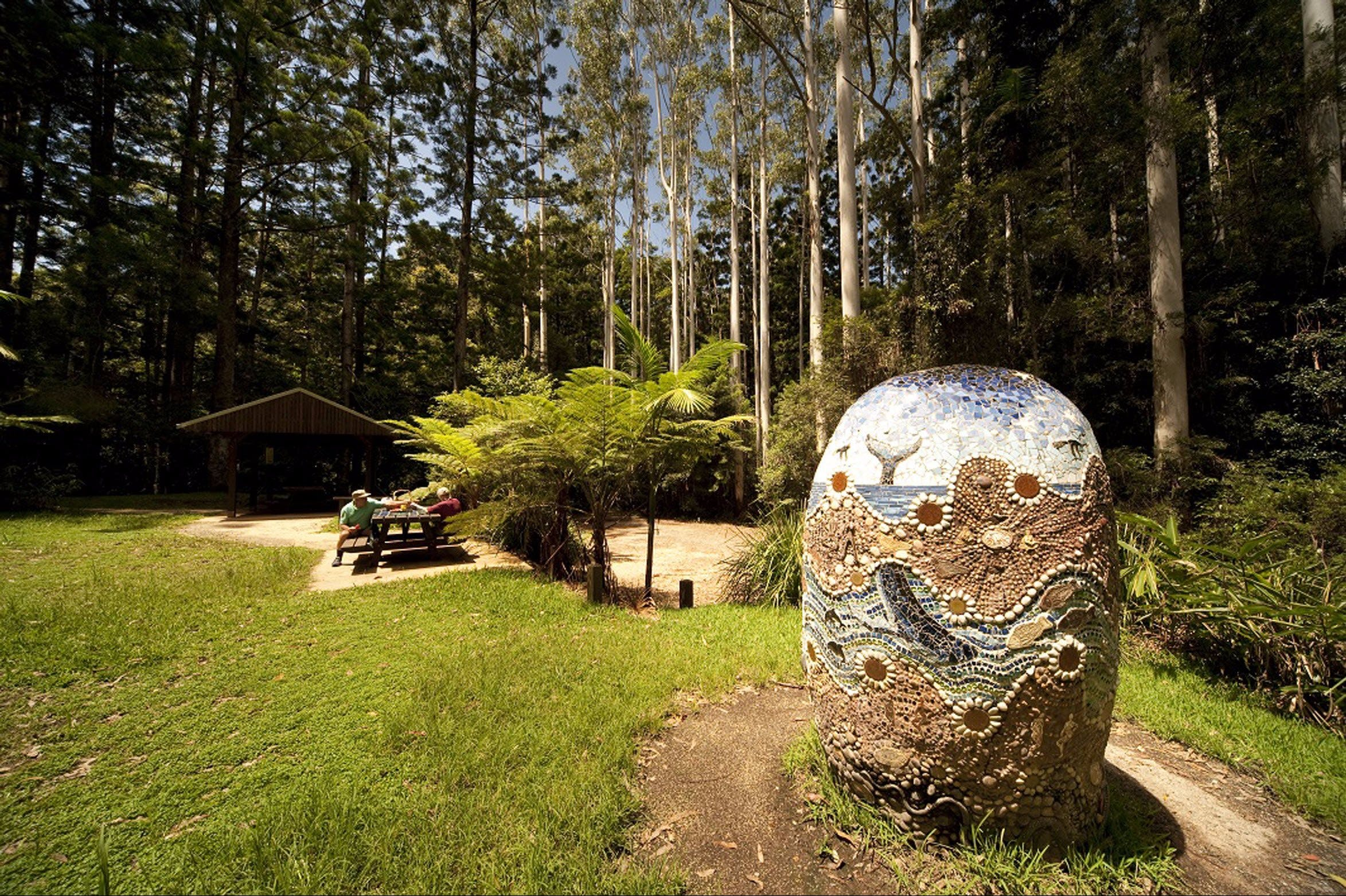The Pines Picnic Area - Sydney Tourism