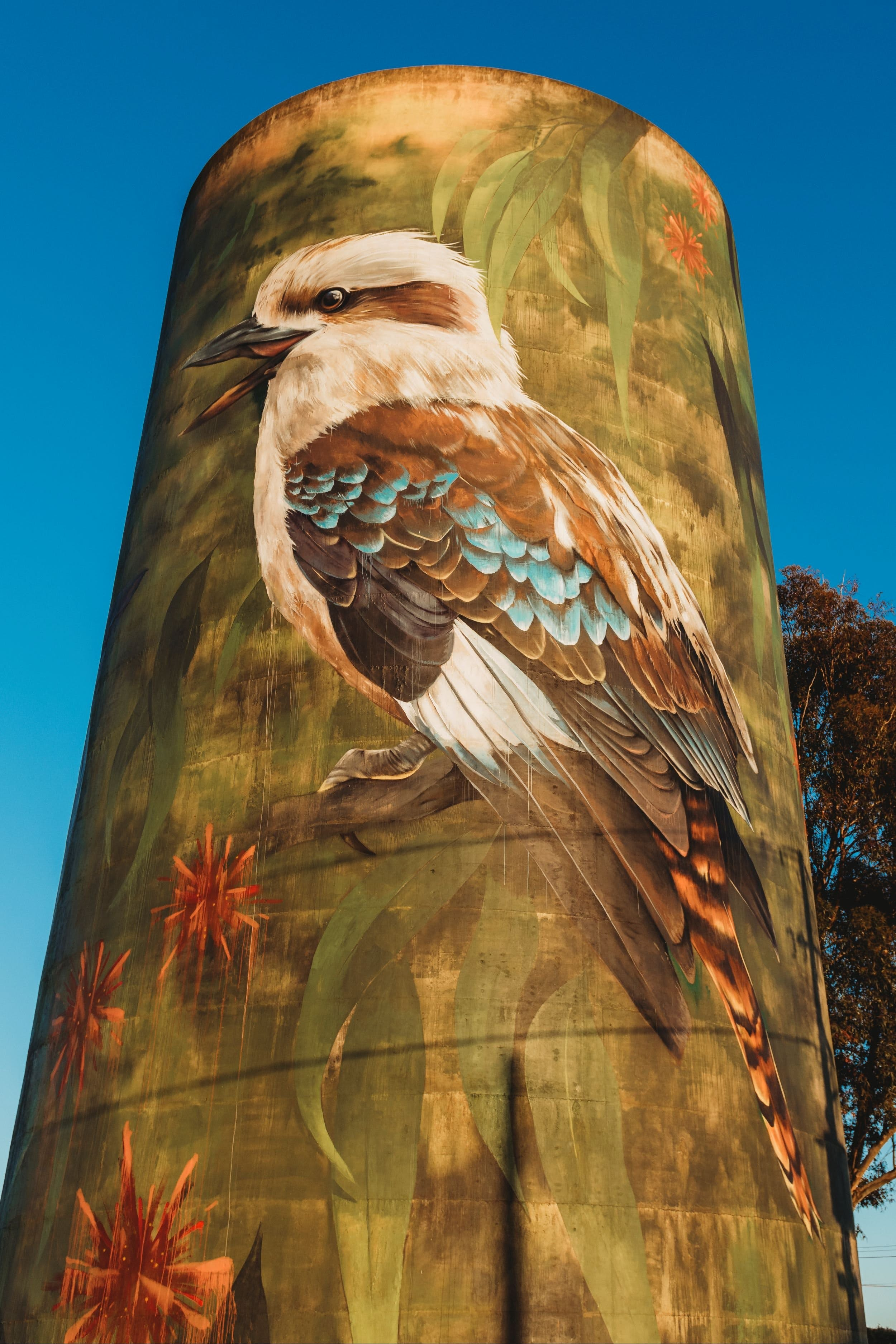 Deniliquin Water Tower Mural - Sydney Tourism