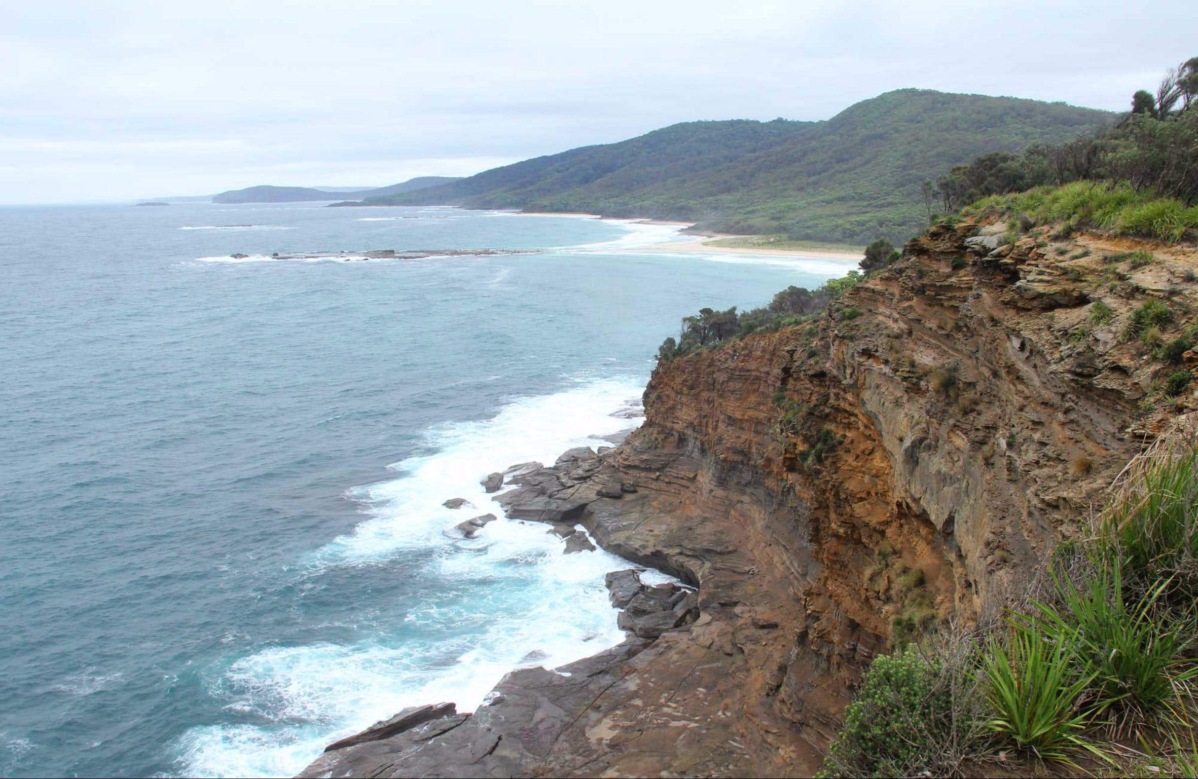 Pretty Beach to Snapper Point Walking Track - Sydney Tourism