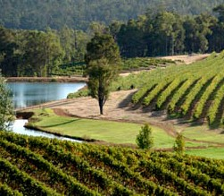 Brookhampton Estate Vineyard - Sydney Tourism