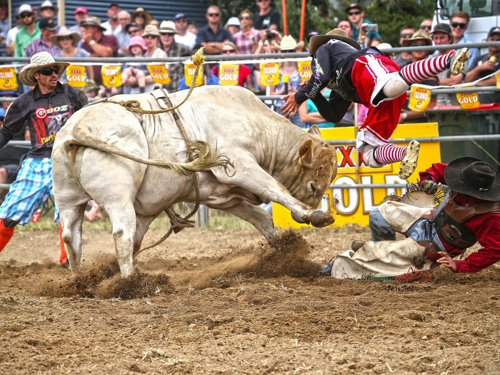 Jindabyne's Man From Snowy River Rodeo - Sydney Tourism