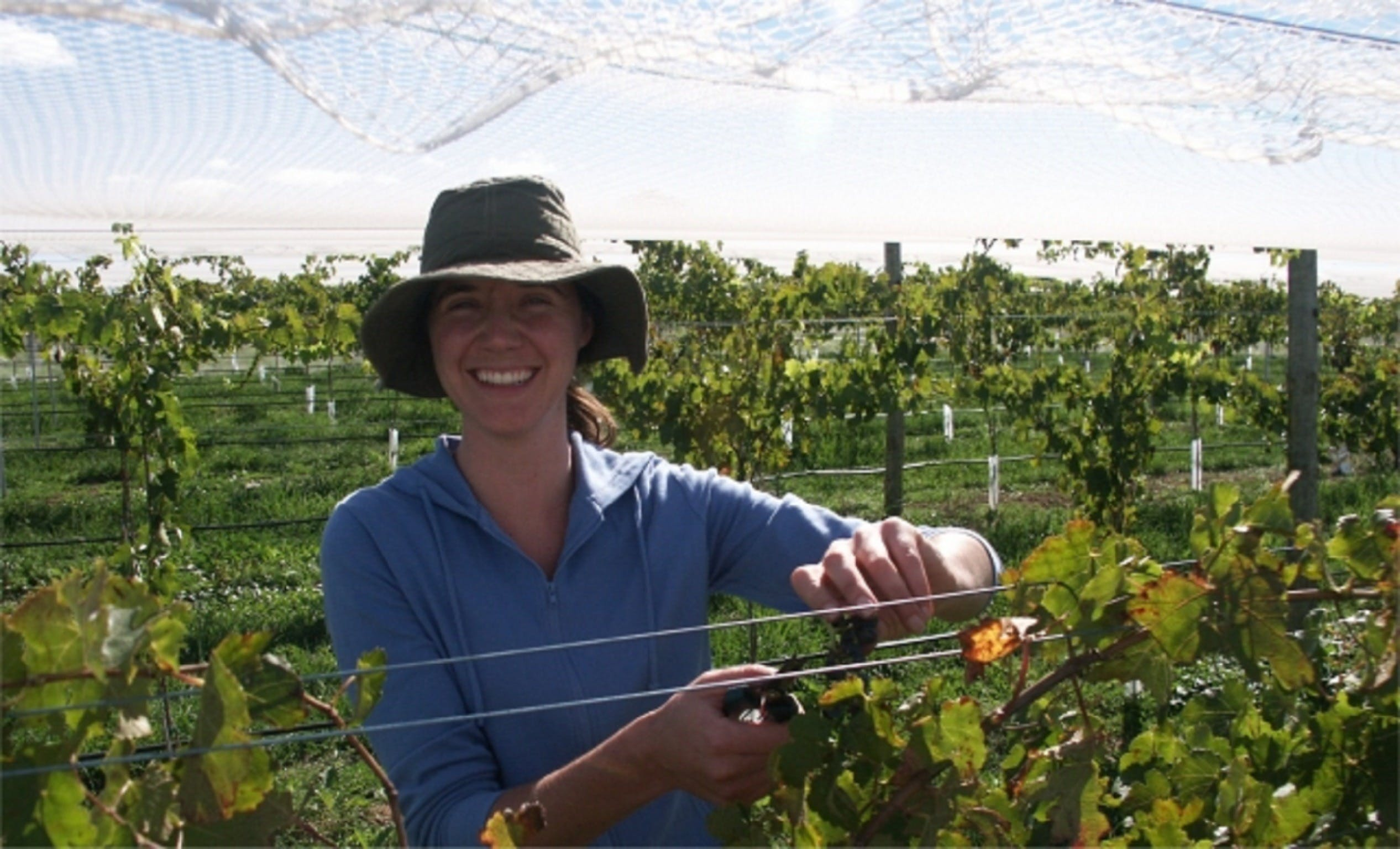 Kingsdale Wines - Cellar Door Wine Tastings - Sydney Tourism