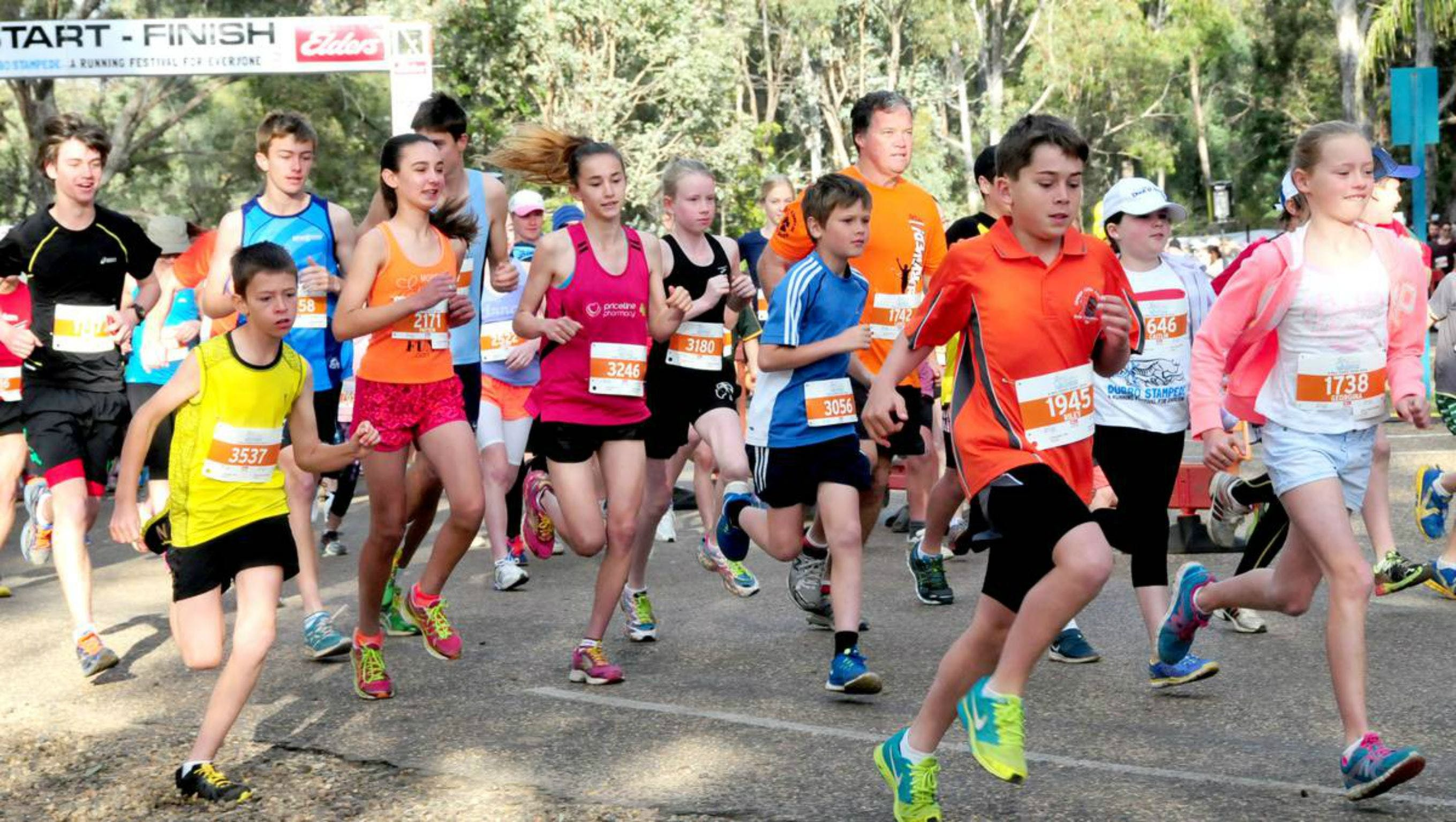 MAAS Group Dubbo Stampede Running Festival - Sydney Tourism
