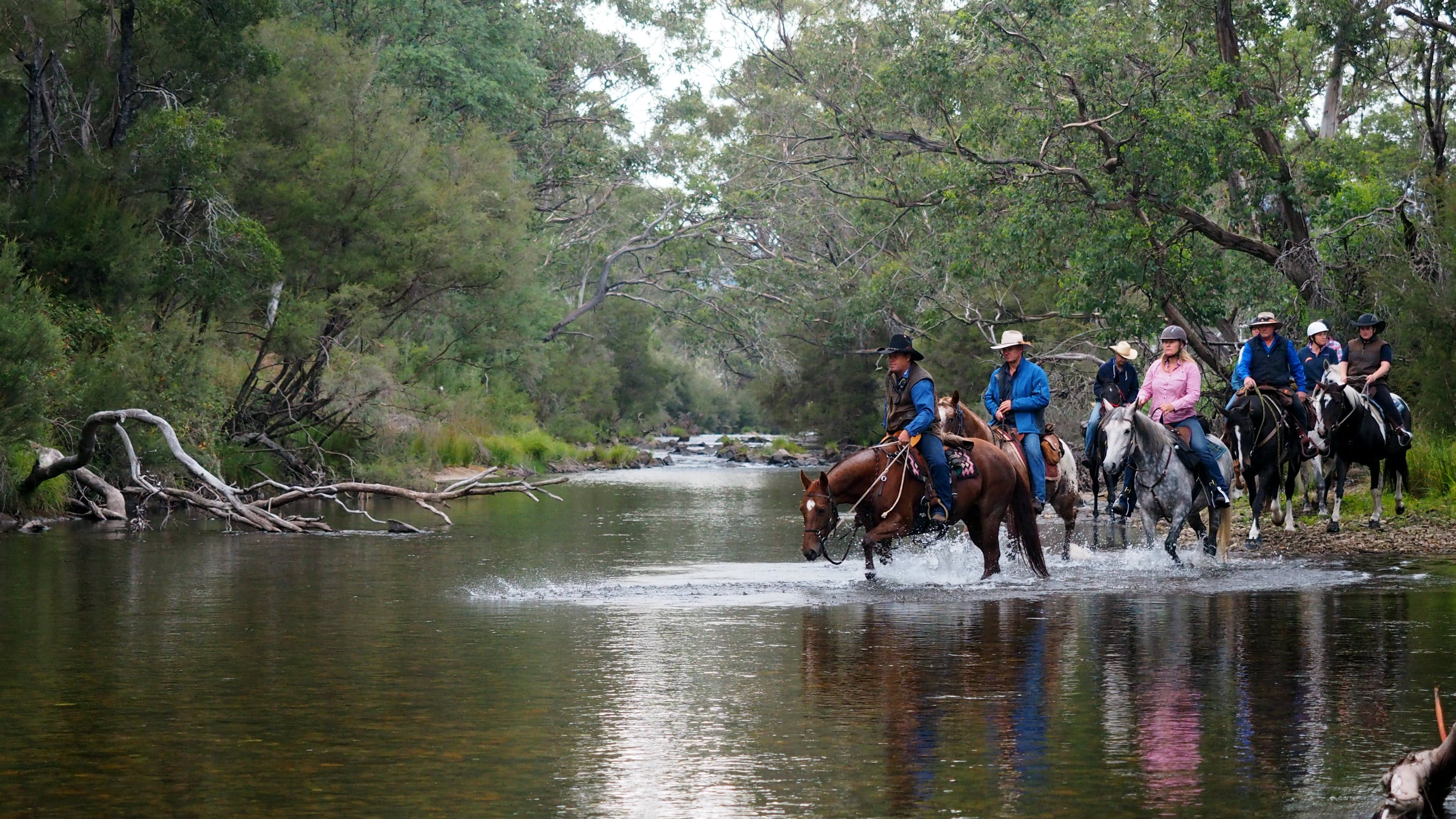 The Man From Snowy River Bush Festival - Sydney Tourism