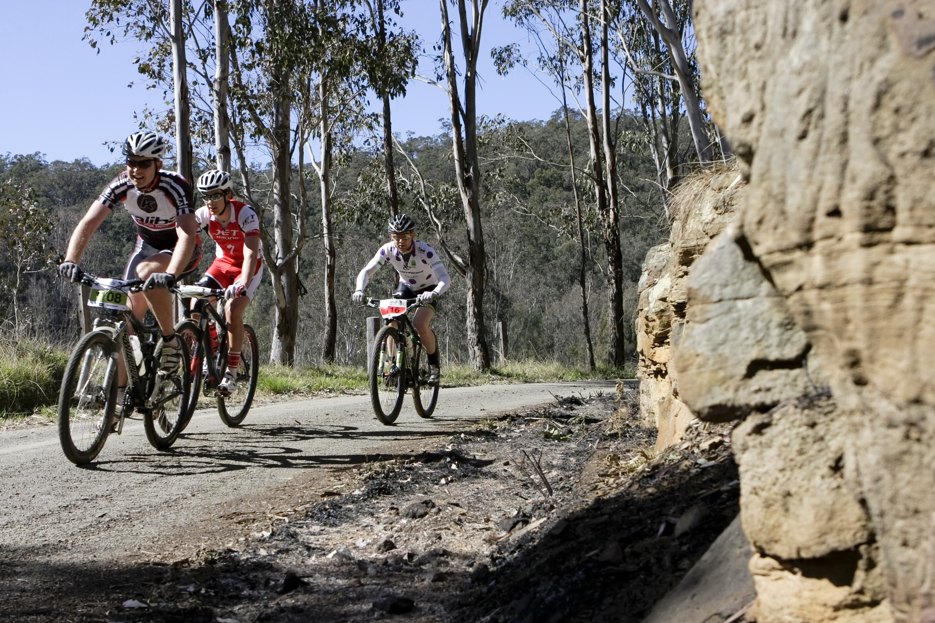 Wollombi Wild Ride Mountain Bike Ride - Sydney Tourism