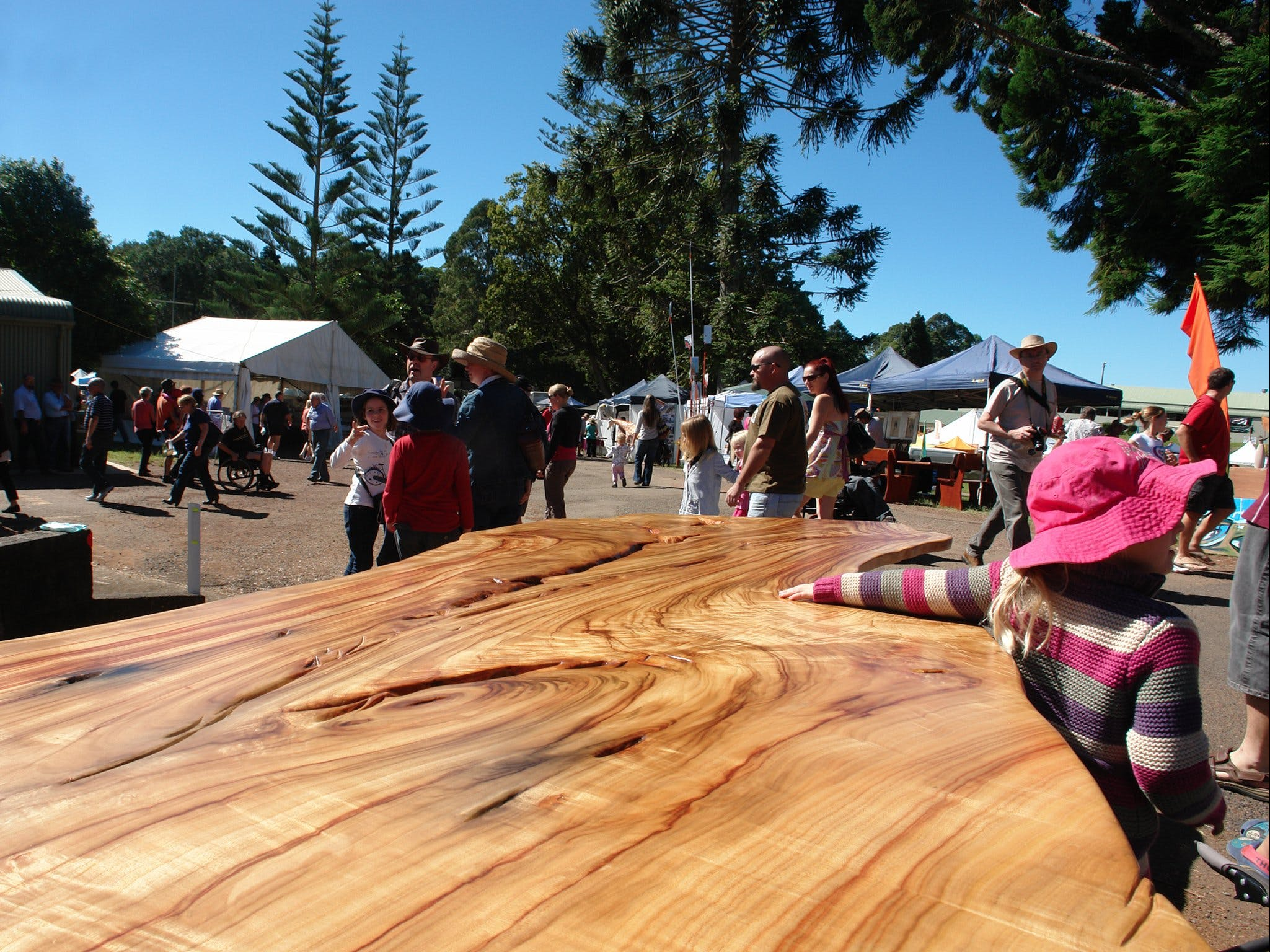 Maleny Wood Expo From Seed to Fine Furniture - Sydney Tourism