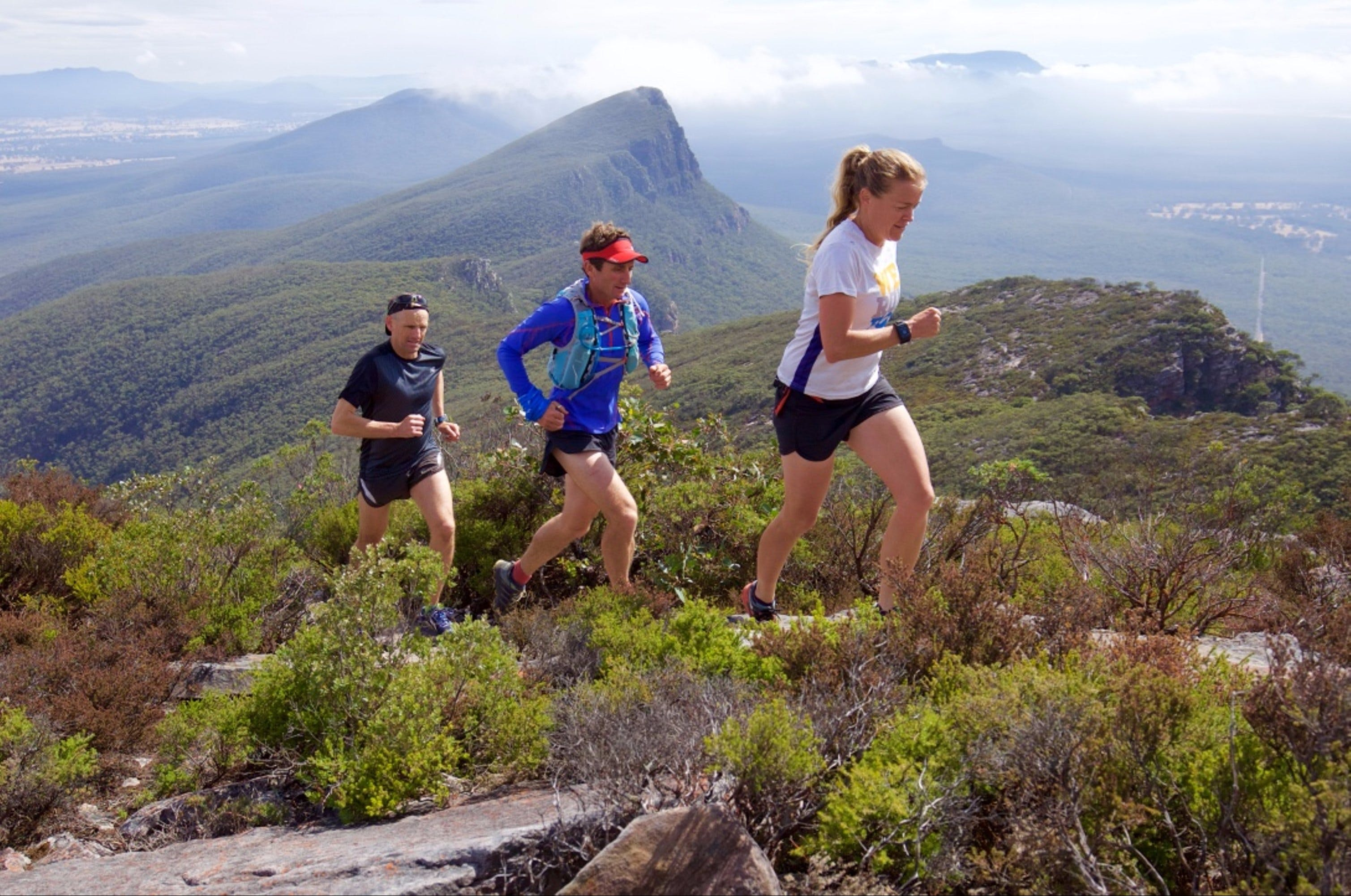 Peaks and Trails Run - Sydney Tourism