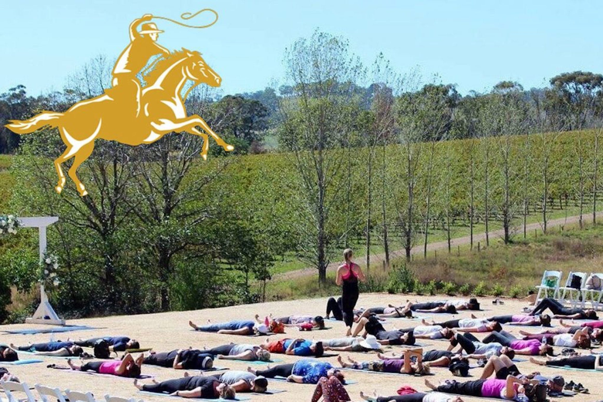 Yoga in the Vines - Sydney Tourism