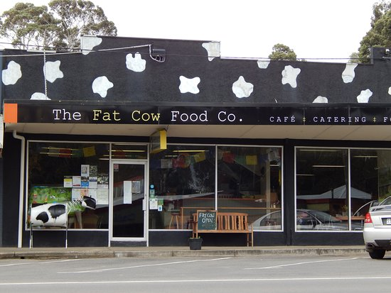 THE FAT COW Food Co. - Sydney Tourism