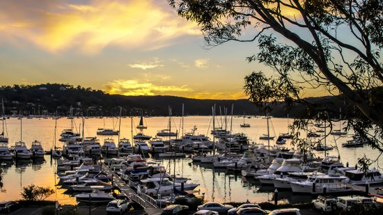 Salt Cove on Pittwater