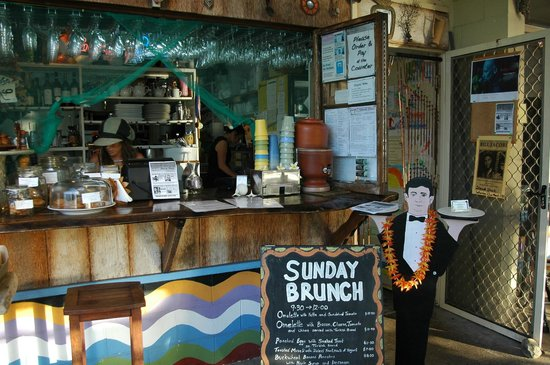 Sheoak Shack Gallery Cafe - Sydney Tourism