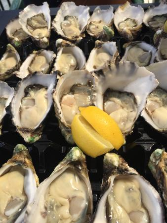 The Oyster Shed - Sydney Tourism