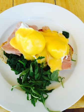The Point Cafe - Sydney Tourism