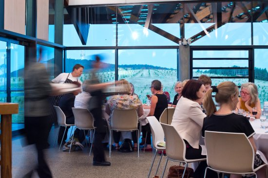 The Conservatory Restaurant - Sydney Tourism