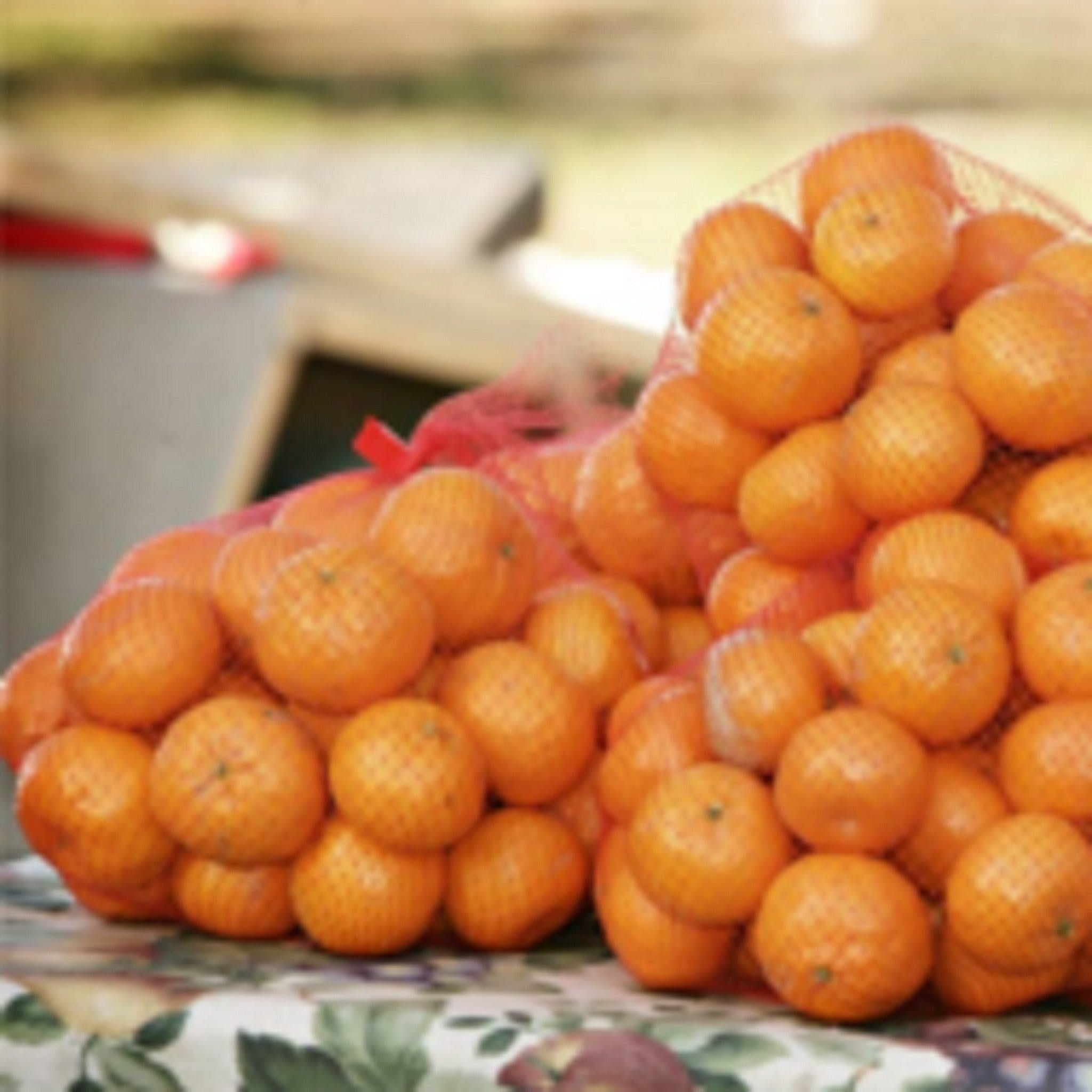 Mathoura Mandarins - Sydney Tourism
