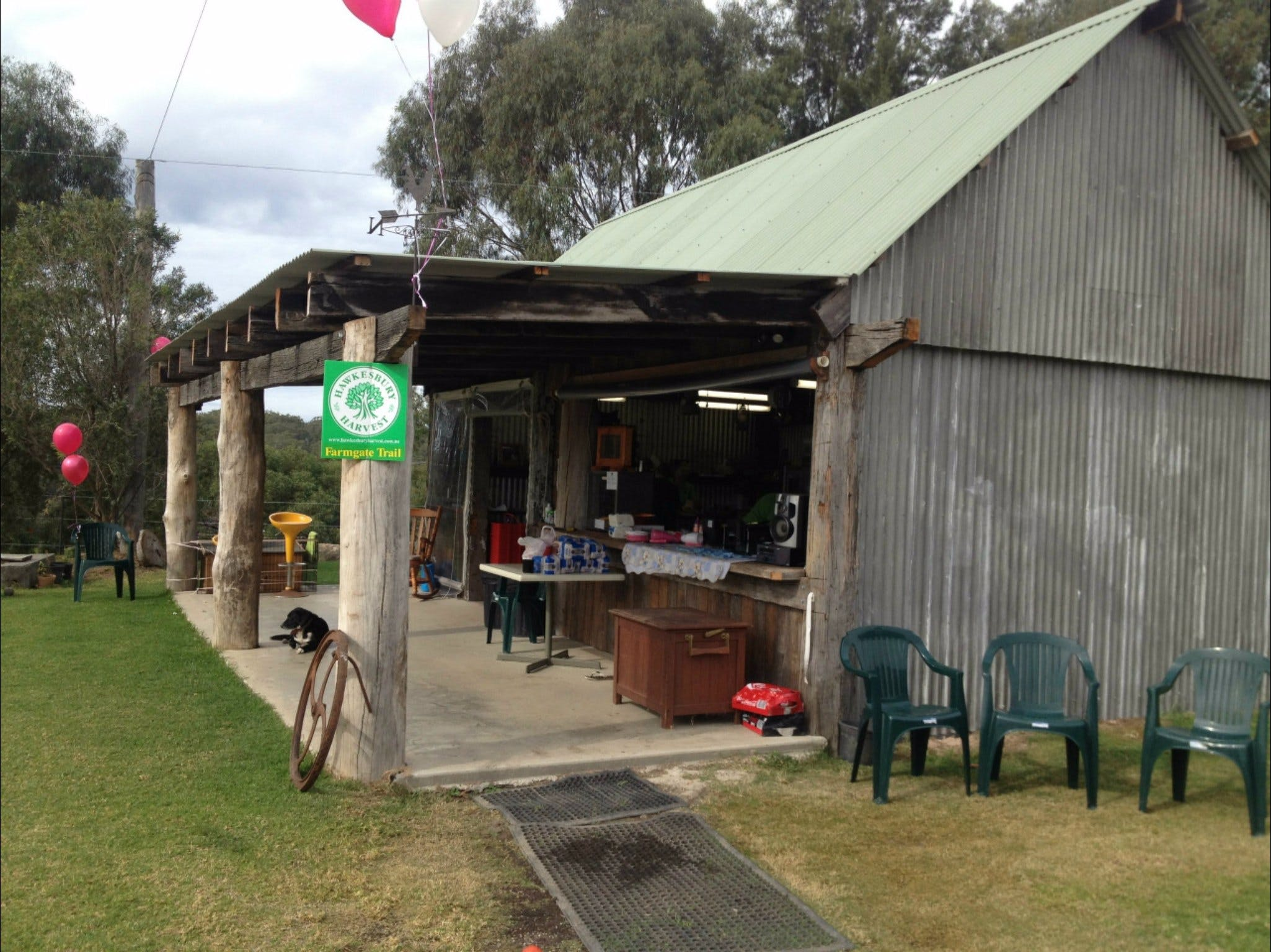 Canoelands Orchard - Sydney Tourism