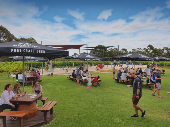 Boston Brewing Co.  Willoughby Park Winery - Sydney Tourism