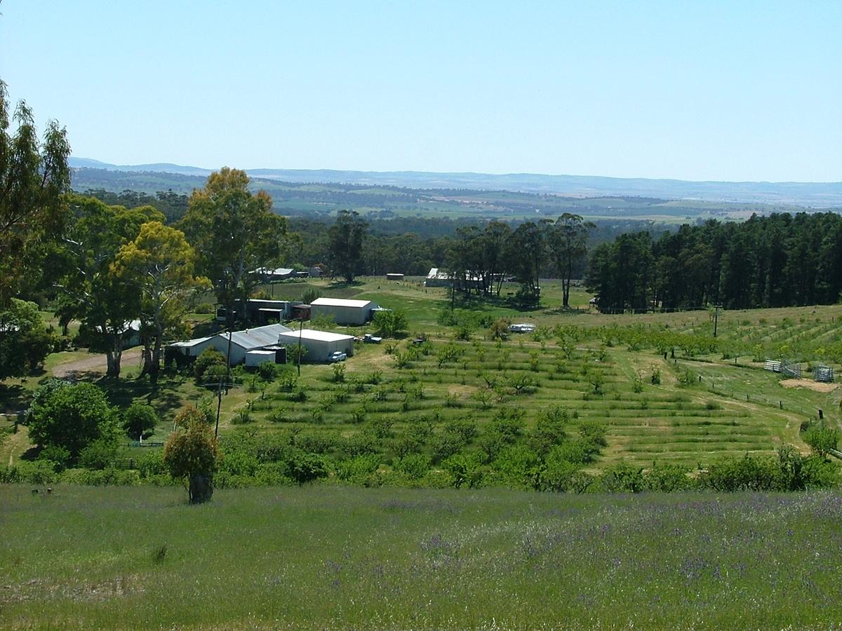 Taralee Orchards - Sydney Tourism