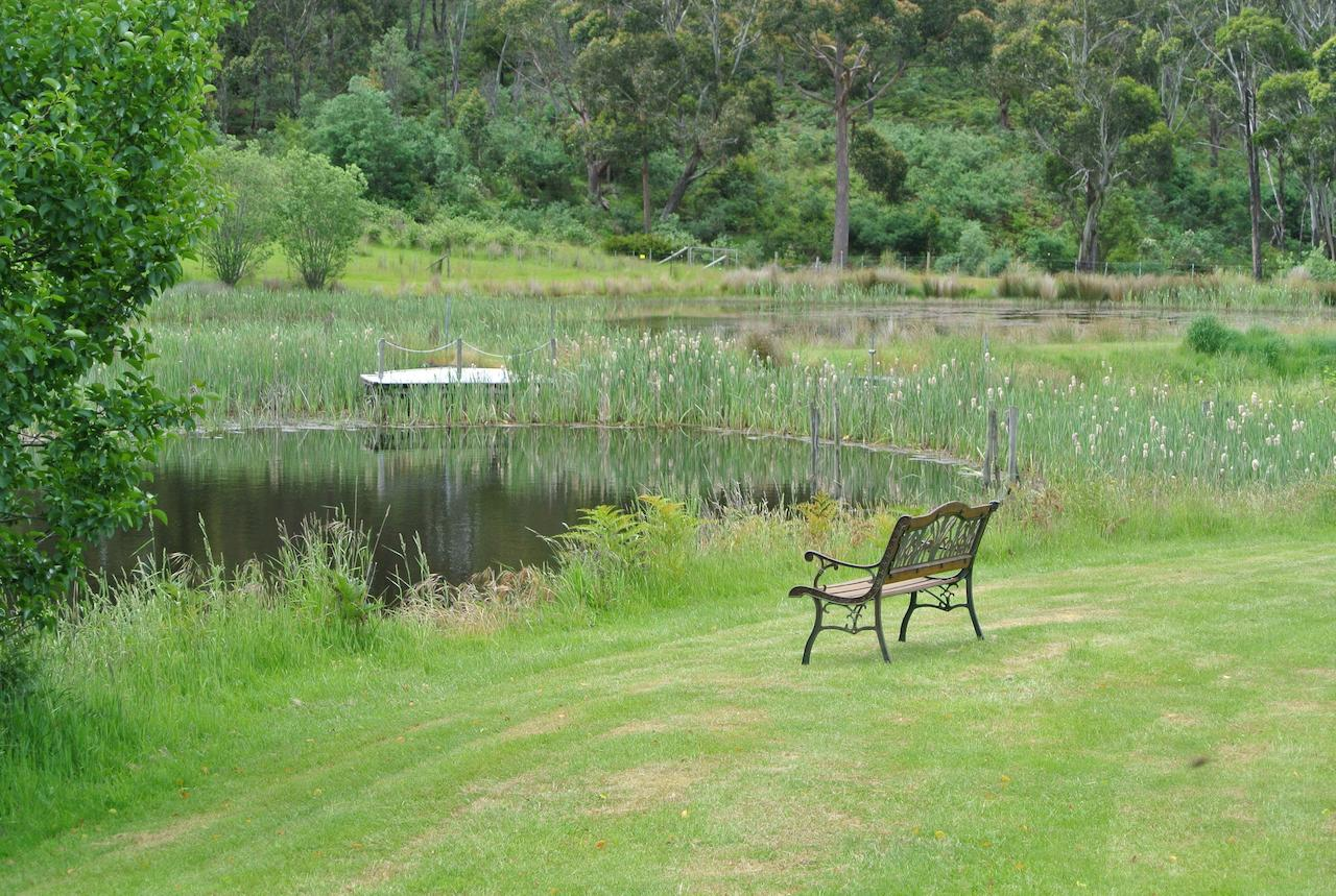 Hamlet Downs Country Accommodation - Sydney Tourism